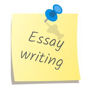 Custom essay writing com
